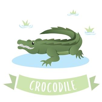 Um, verde, feliz, crocodilo