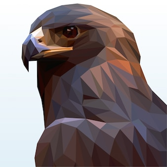 Uma águia careca poligonal