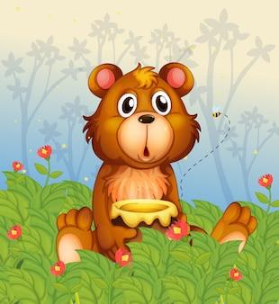 Uma cara chocante de um urso na floresta