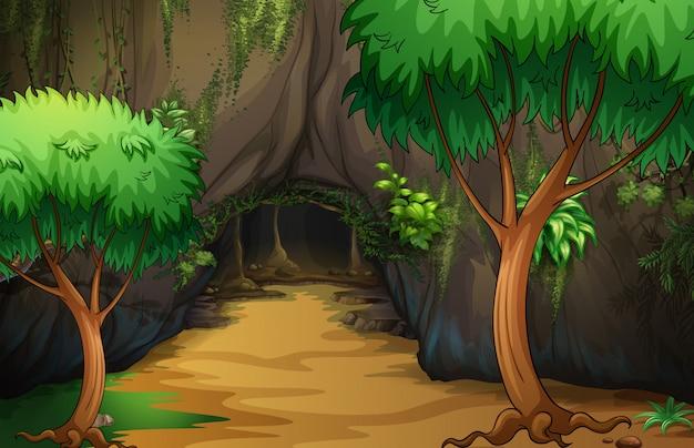 Uma caverna na floresta