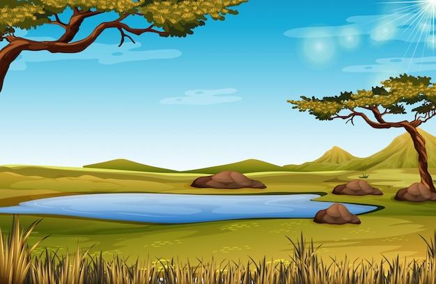 Uma cena da natureza da savana