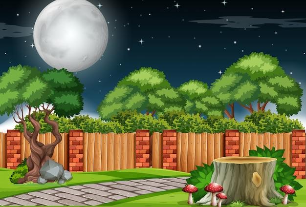 Uma cena de jardim à noite