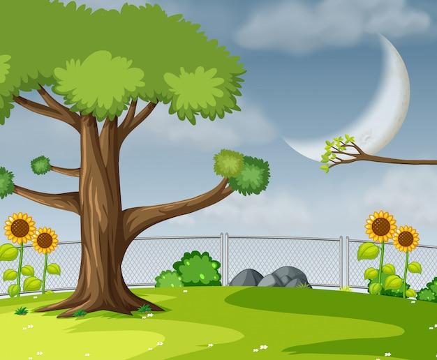 Uma cena de jardim plana