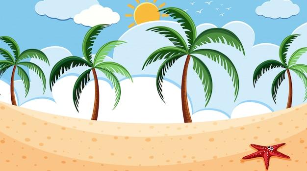 Uma cena de praia simples