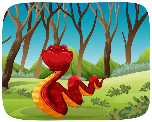 Uma cobra na floresta