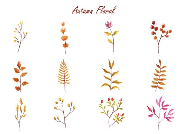 Uma coleção de arte em aquarela de alguns galhos e folhas de belas plantas de outono.