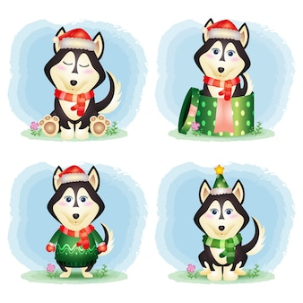 Uma coleção de personagens de natal de cães husky fofos