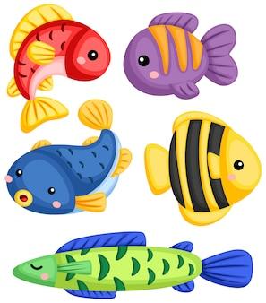 Uma coleção de vetores de muitos peixes