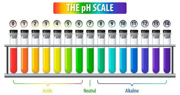 Uma escala de ph em fundo branco