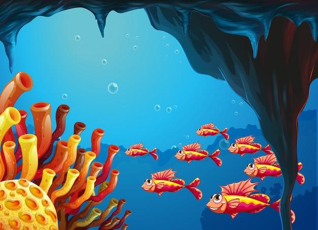Uma escola de peixes indo para os recifes de coral dentro da caverna