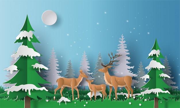 Uma família do cervo anda através de uma floresta.
