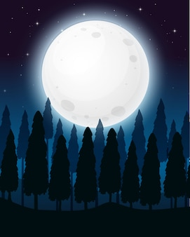Uma floresta na noite da lua cheia