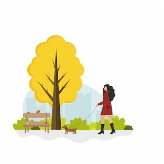 Uma garota caminha com um cachorro em um parque de outono. ilustração plana dos desenhos animados em vetor. uma mulher caminha com um pequeno dachshund. desenho no estilo de vida.