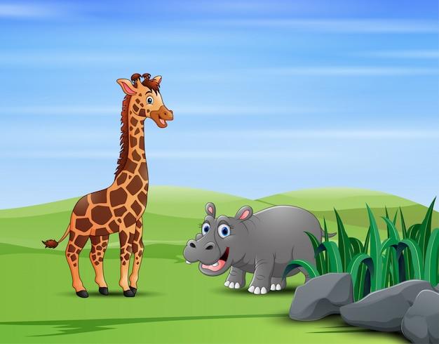 Uma girafa com hipopótamo no campo verde