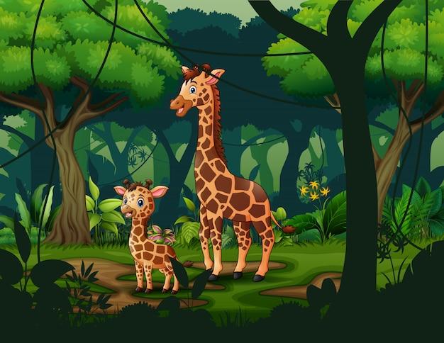 Uma girafa com seu filhote em uma floresta tropical