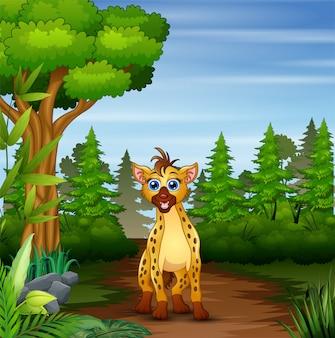 Uma hiena à procura de presas na cena da floresta