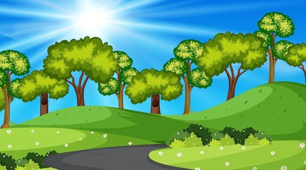 Uma ilustração da estrada da natureza