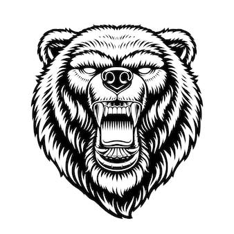 Uma ilustração em preto e branco de uma cabeça de urso isolada no fundo branco