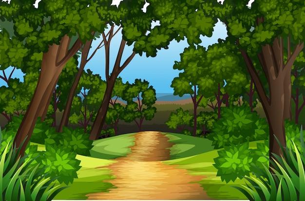 Uma paisagem de estrada natural