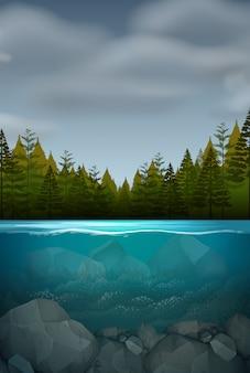 Uma paisagem natureza subaquática