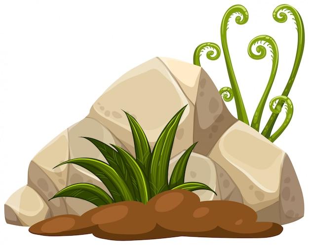 Uma pedra natural para decoração