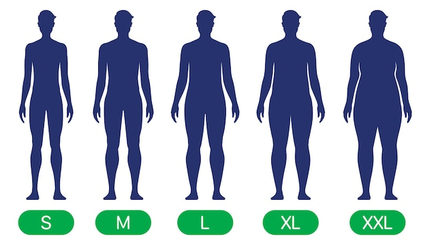 Uma pessoa com diferentes tamanhos de corpo, de magro a xxl. gráfico de vetor de formas corporais padrão