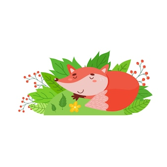 Uma raposa fofa está dormindo no gramado