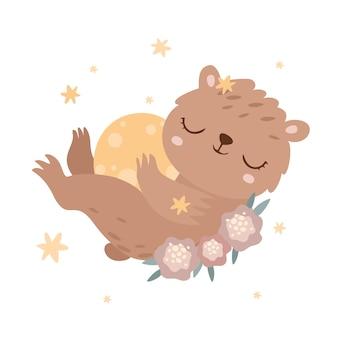 Urso adormecido