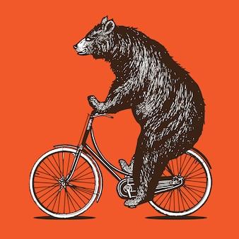 Urso, andar de bicicleta