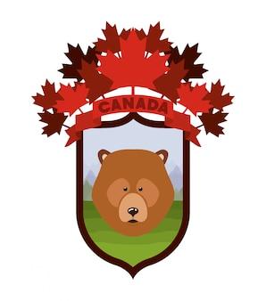 Urso animal e pinheiros