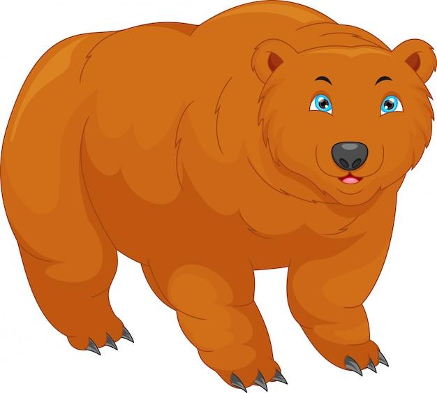Urso bonito dos desenhos animados