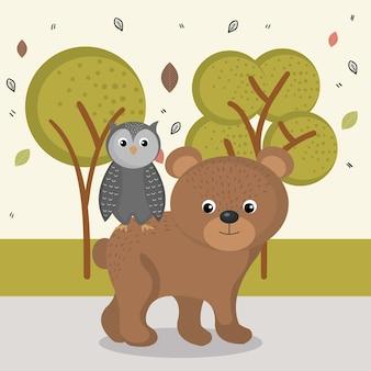 Urso bonito e personagens animais de coruja