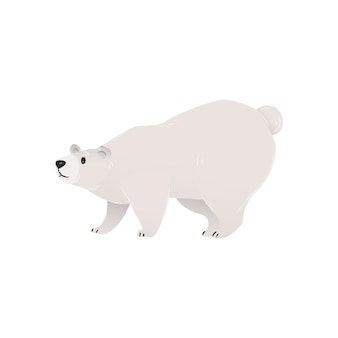 Urso branco polar ártico