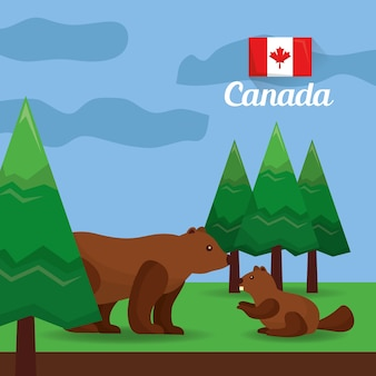 Urso canadá e castor na ilustração vetorial de floresta