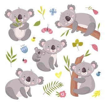 Urso coala. animal da austrália, mãe abraçando bebê.