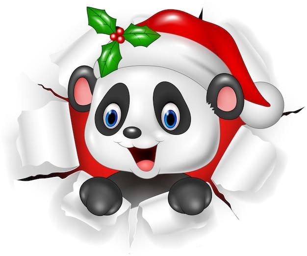 Urso de panda bebê dos desenhos animados, rasgando o fundo