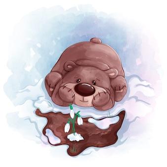 Urso de pelúcia olha snowdrops que floresceram na primavera. textura aquarela
