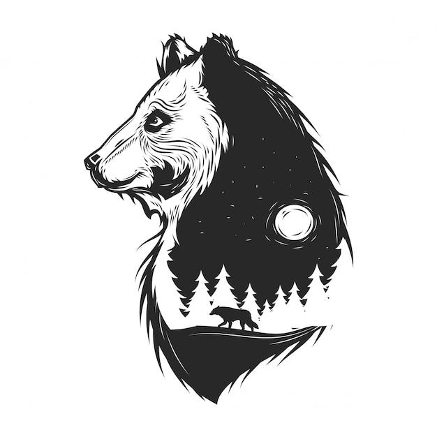 Urso e floresta