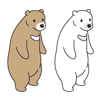 Urso e urso polar
