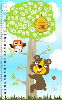 Urso engraçado escalar uma árvore, parede do medidor