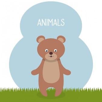 Urso fofo no personagem paisagem de campo
