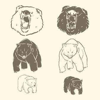 Urso mão desenhada ilustrações vetoriais