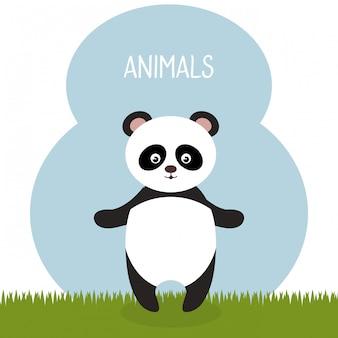 Urso panda bonito no personagem paisagem de campo