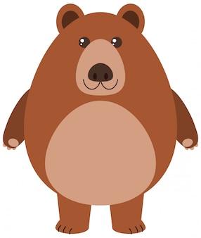 Urso pardo cartoon ilustração