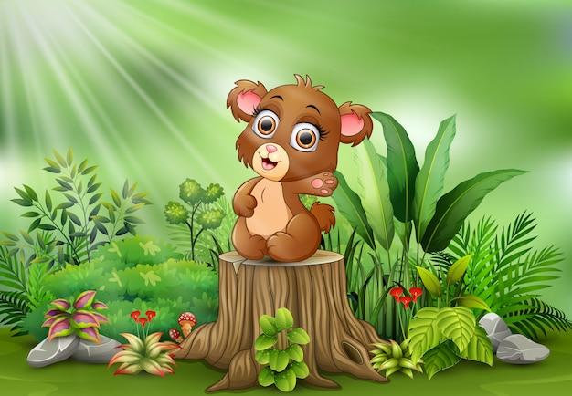 Urso-pardo de bebê dos desenhos animados sentado no toco de árvore