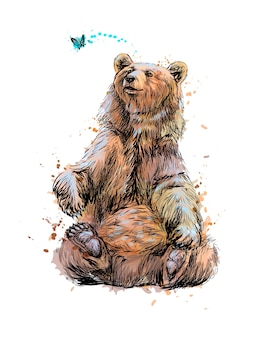 Urso-pardo sentado e brincando com uma borboleta de um toque de aquarela, esboço desenhado à mão. ilustração de tintas
