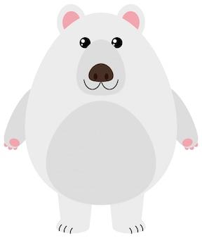 Urso polar com rosto feliz