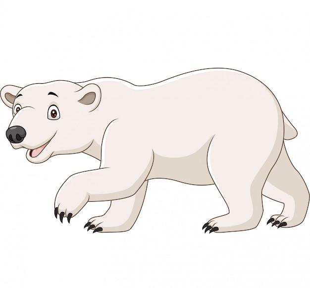Urso polar dos desenhos animados, isolado no branco