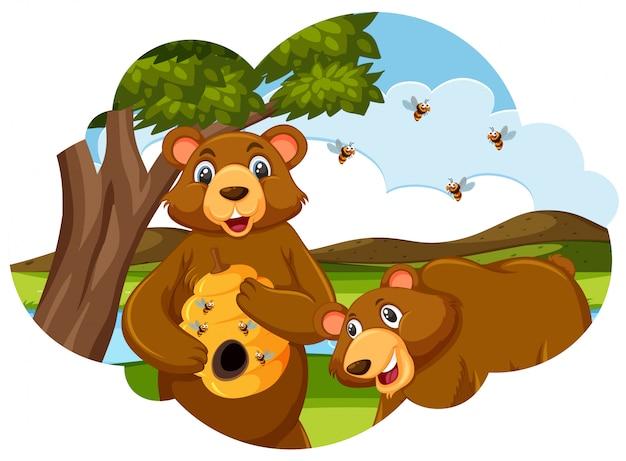 Urso segurando o modelo de colméia