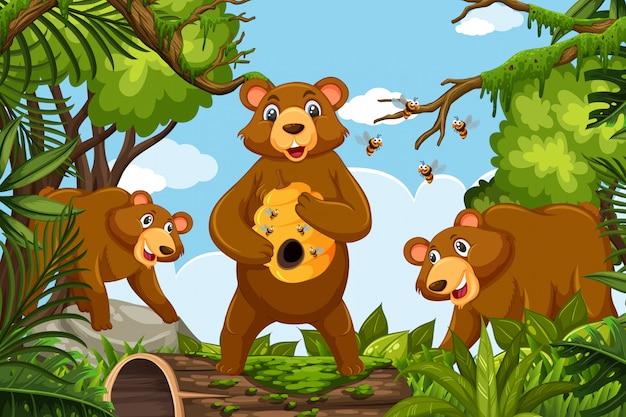 Ursos de mel na cena da selva